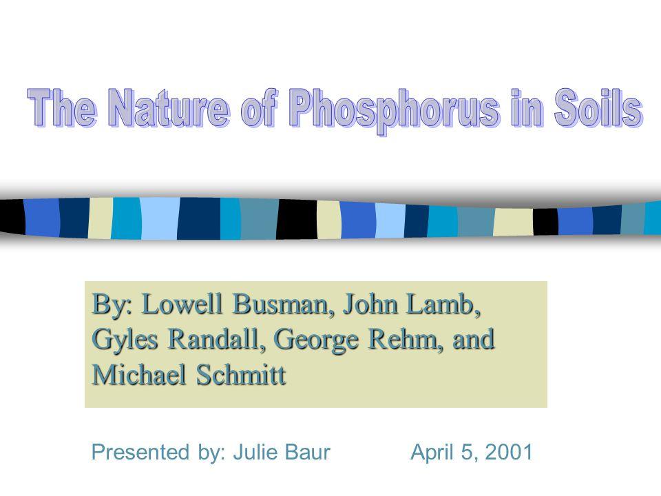 By: Lowell Busman, John Lamb, Gyles Randall, George Rehm, and Michael Schmitt Presented by: Julie Baur April 5, 2001