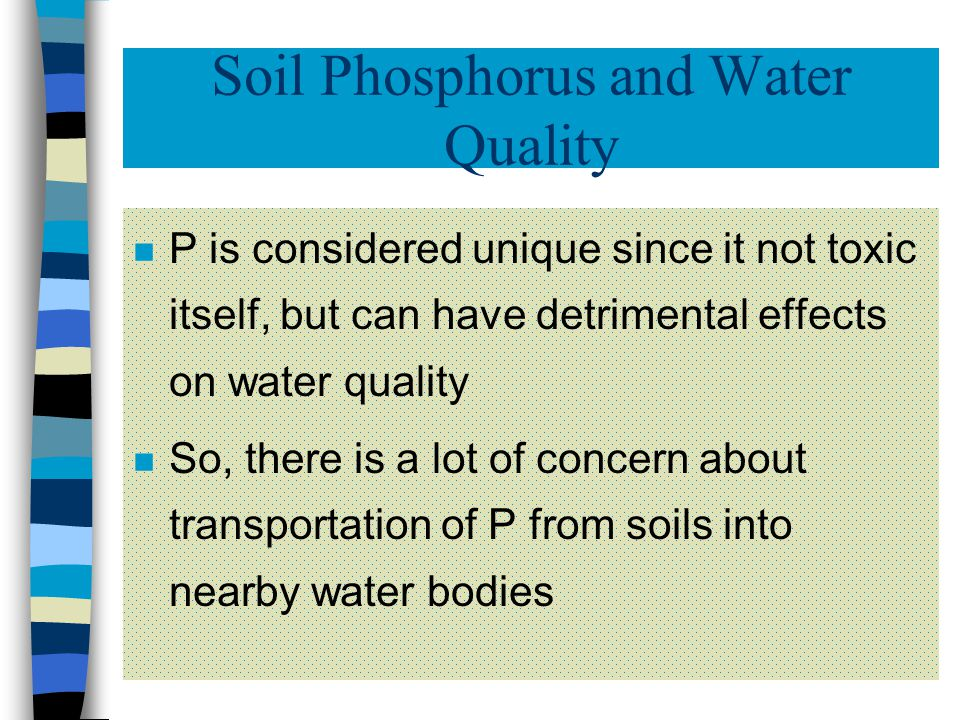 Fate of Phosphorus Added to Soils (4) n Fine- textured soils can hold hundreds of pounds of P per acre n Coarse-textured soils can hold much less n Loading soils with P will generally not hurt the crops, but will usually result in an increased P concentration in nearby bodies of water