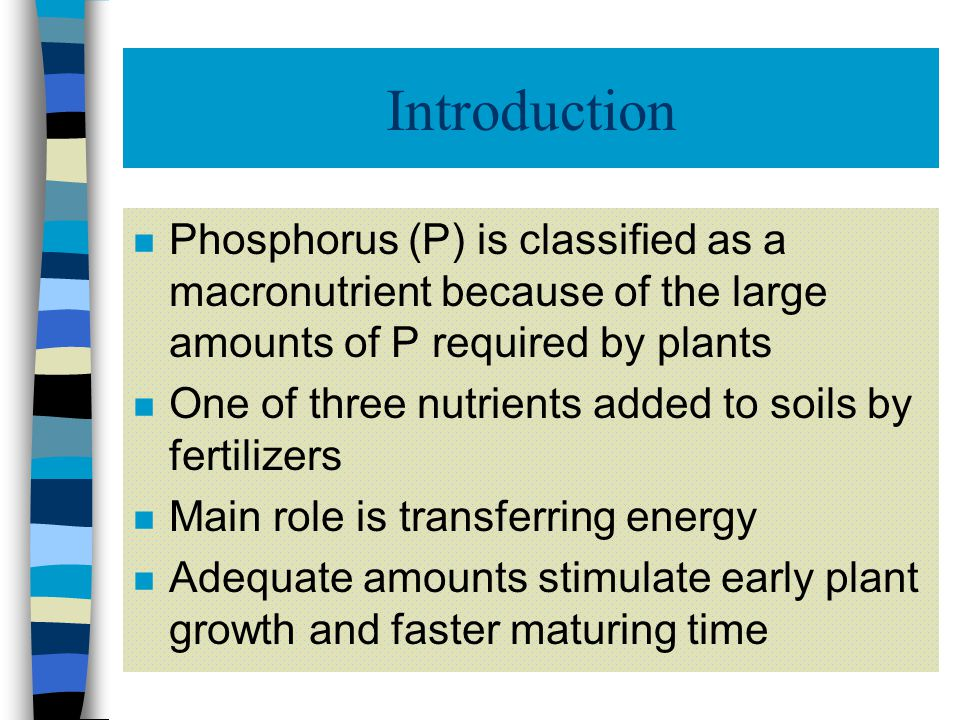 Forms of Phosphorus in Soils (6) Fixed P Pool: n Little impact on fertility of soils n Some slow conversion between fixed P pool and active P pool