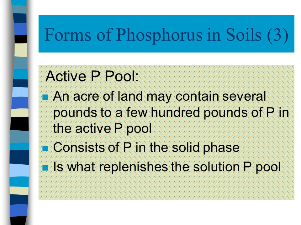 Forms of Phosphorus in Soils (2) Solution P Pool: n Very small, usually contains only a fraction of a pound of P per acre n Only pool from which plants will take up P n Only pool with measured mobility n Needs to be continuously replenished
