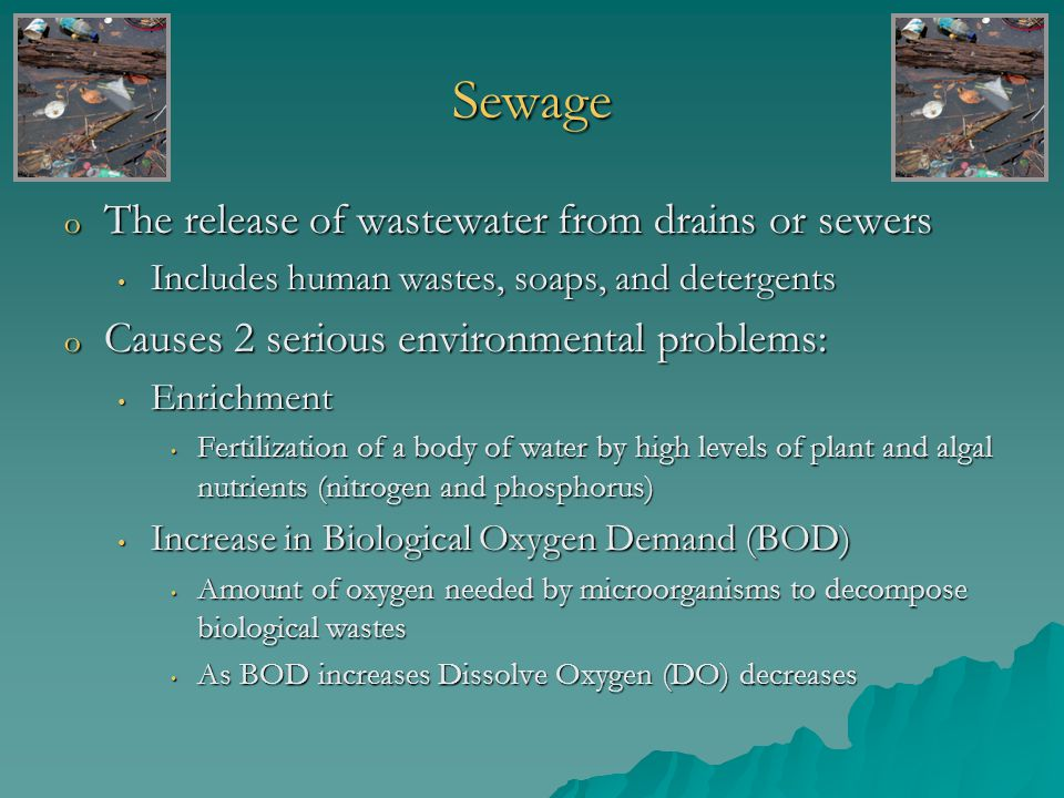Individual Septic System- Septic Tank