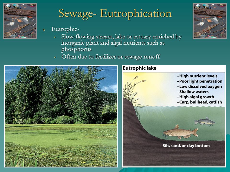 Laws that Protect Groundwater o Safe Drinking Water Act o Resource, Conservation and Recovery Act