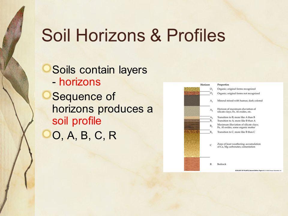 Soil Horizons & Profiles Soils contain layers - horizons Sequence of horizons produces a soil profile O, A, B, C, R