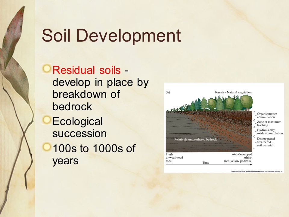 Soil Development Residual soils - develop in place by breakdown of bedrock Ecological succession 100s to 1000s of years