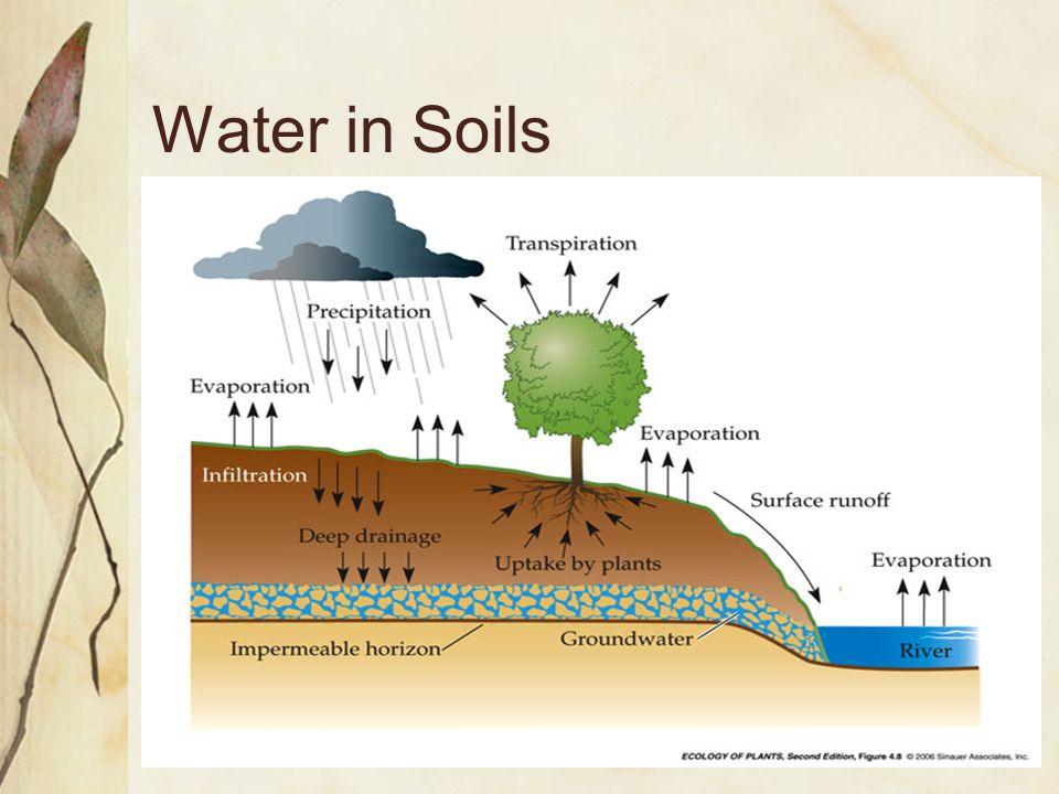 Water in Soils