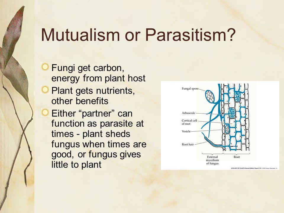 Mutualism or Parasitism.