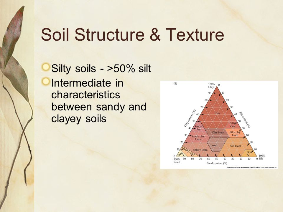 Soil Structure & Texture Silty soils - >50% silt Intermediate in characteristics between sandy and clayey soils