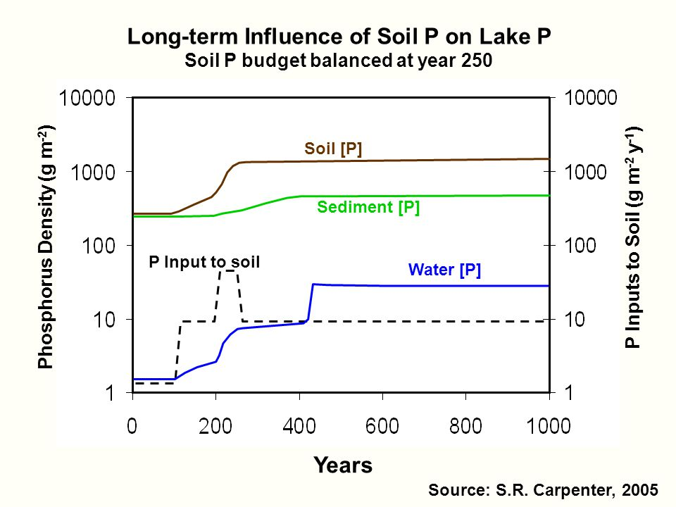 Phosphorus Density (g m -2 ) P Inputs to Soil (g m -2 y -1 ) Long-term Influence of Soil P on Lake P Soil P budget balanced at year 250 P Input to soil Water [P] Soil [P] Sediment [P] Years Source: S.R.
