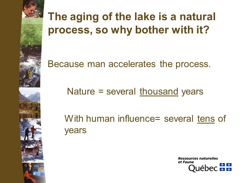 10 The aging of the lake is a natural process, so why bother with it.