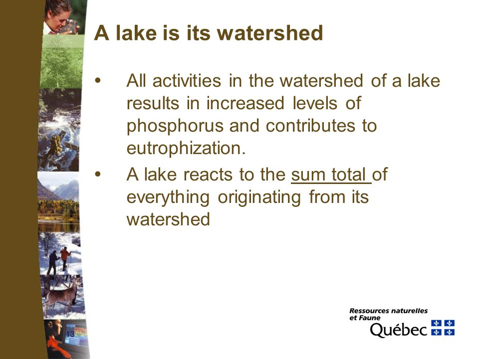 13 A lake is its watershed  All activities in the watershed of a lake results in increased levels of phosphorus and contributes to eutrophization. 