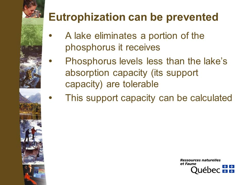 14 Eutrophization can be prevented  A lake eliminates a portion of the phosphorus it receives  Phosphorus levels less than the lake's absorption capacity (its support capacity) are tolerable  This support capacity can be calculated