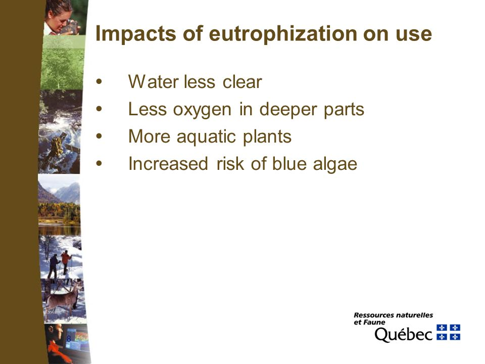 8 Impacts of eutrophization on use  Water less clear  Less oxygen in deeper parts  More aquatic plants  Increased risk of blue algae