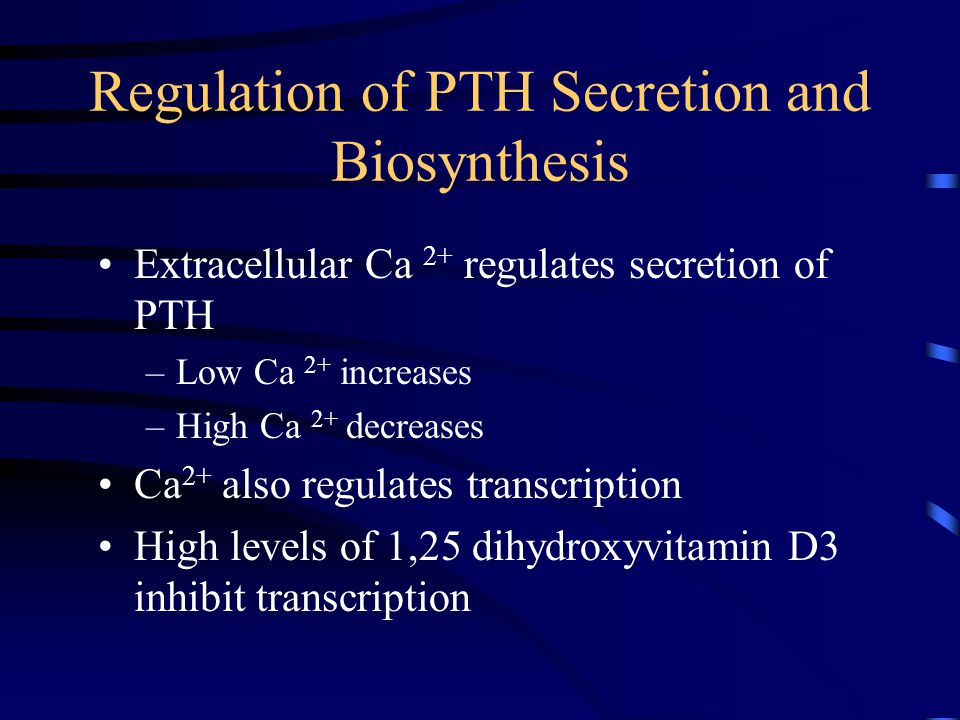Regulation of PTH Secretion and Biosynthesis Extracellular Ca 2+ regulates secretion of PTH –Low Ca 2+ increases –High Ca 2+ decreases Ca 2+ also regu