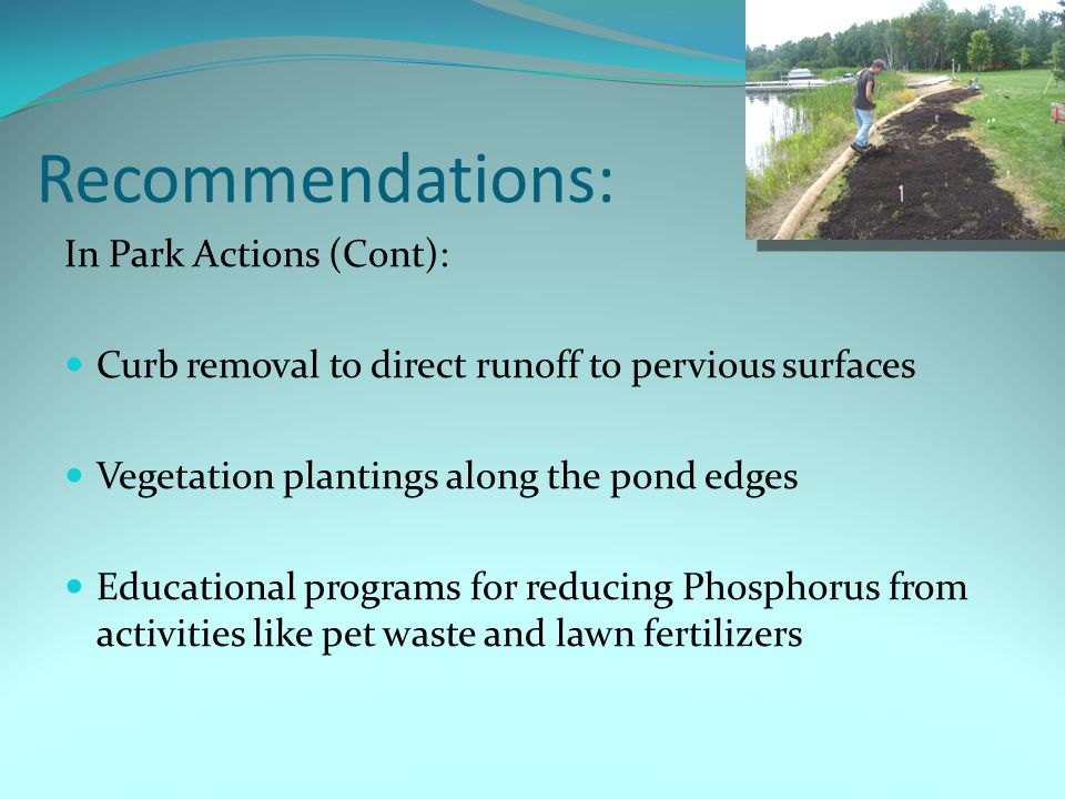 Recommendations: In Park Actions (Cont): Curb removal to direct runoff to pervious surfaces Vegetation plantings along the pond edges Educational programs for reducing Phosphorus from activities like pet waste and lawn fertilizers