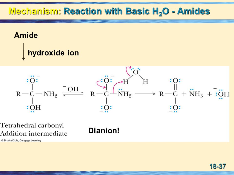 18-37 Mechanism: Reaction with Basic H 2 O - Amides Amide hydroxide ion Dianion!