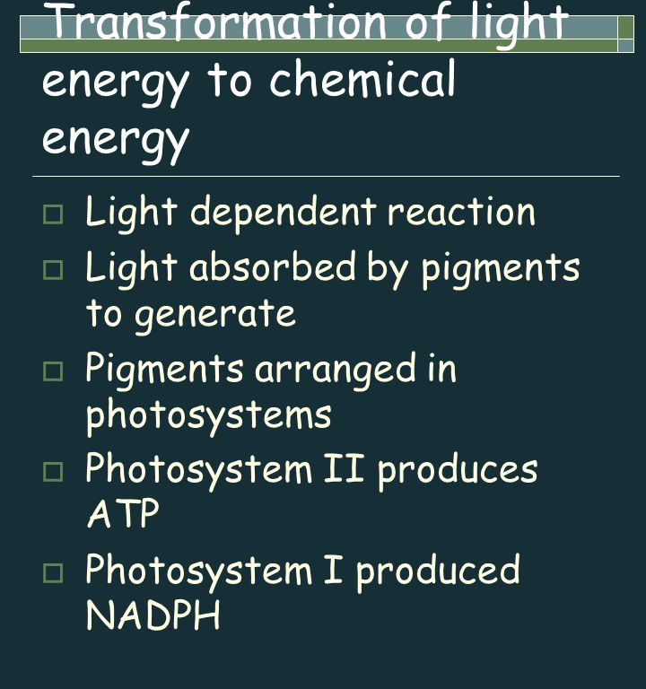 Transformation of light energy to chemical energy  Light dependent reaction  Light absorbed by pigments to generate  Pigments arranged in photosyst
