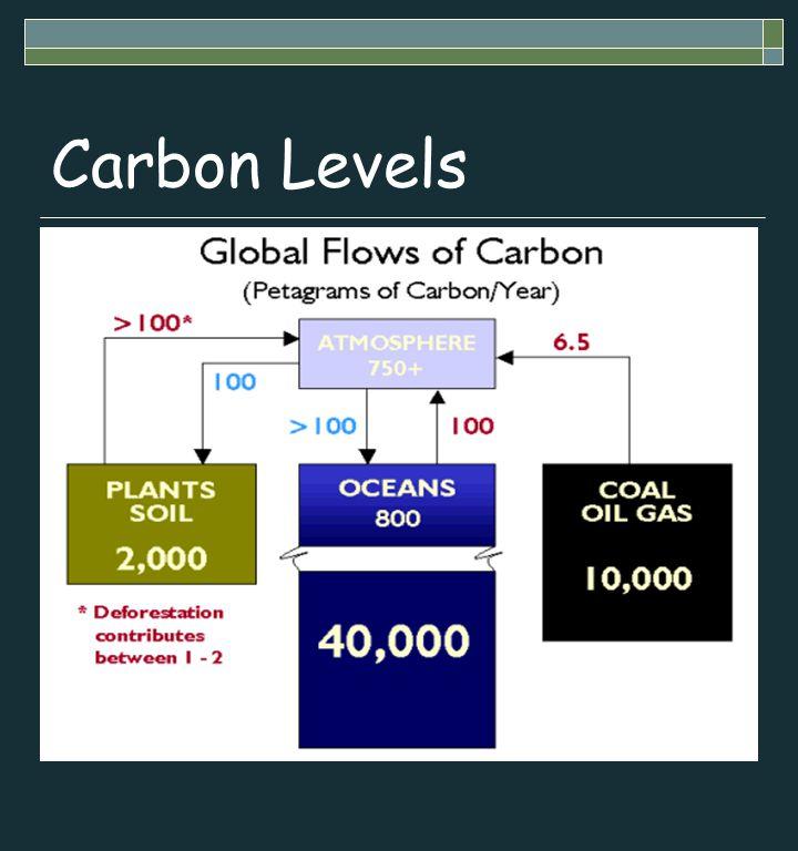 Carbon Levels