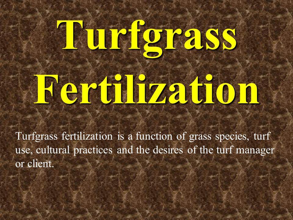 Uniform, timely applications of nitrogen to a bermudagrass sports field.