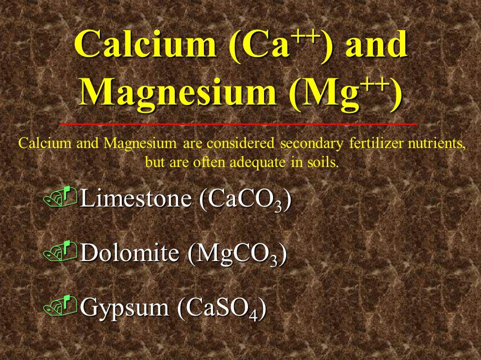 Calcium (Ca ++ ) and Magnesium (Mg ++ ).Limestone (CaCO 3 ).Dolomite (MgCO 3 ).Gypsum (CaSO 4 ) Calcium and Magnesium are considered secondary fertili