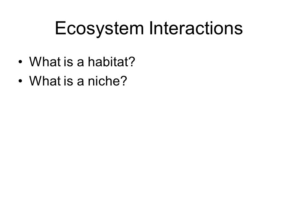 Ecosystem Interactions What is a habitat? What is a niche?
