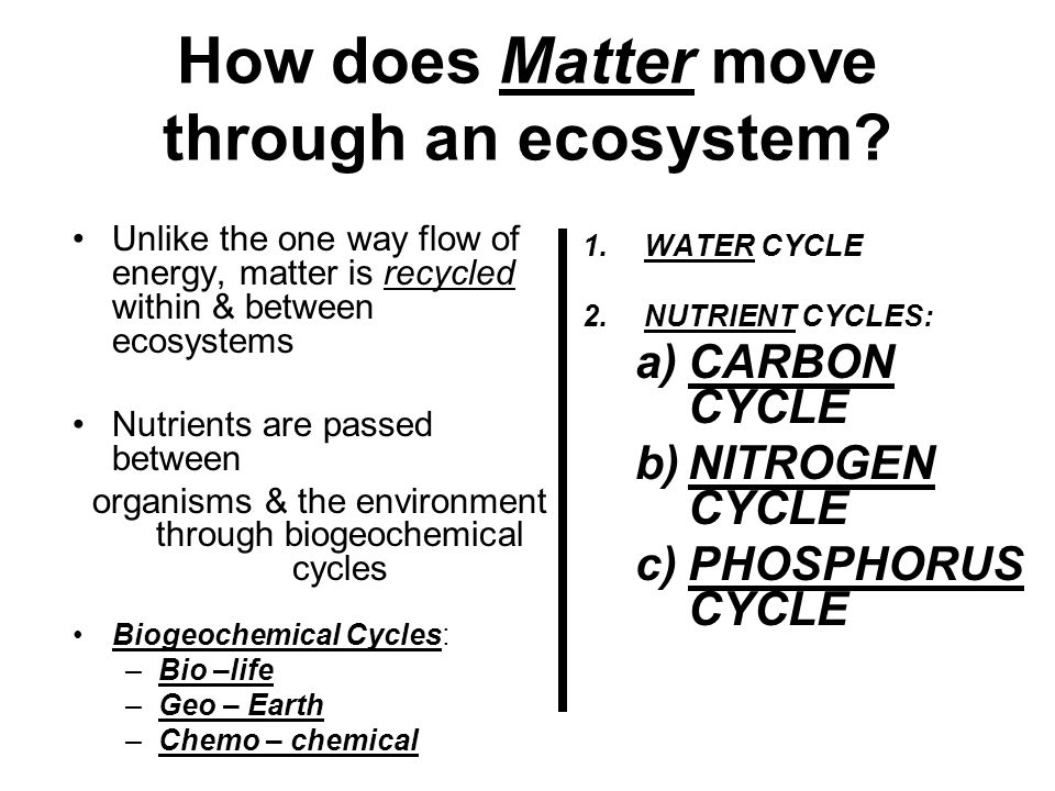 How does Matter move through an ecosystem? Unlike the one way flow of energy, matter is recycled within & between ecosystems Nutrients are passed betw