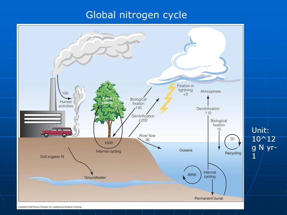 Global nitrogen cycle Unit: 10^12 g N yr- 1