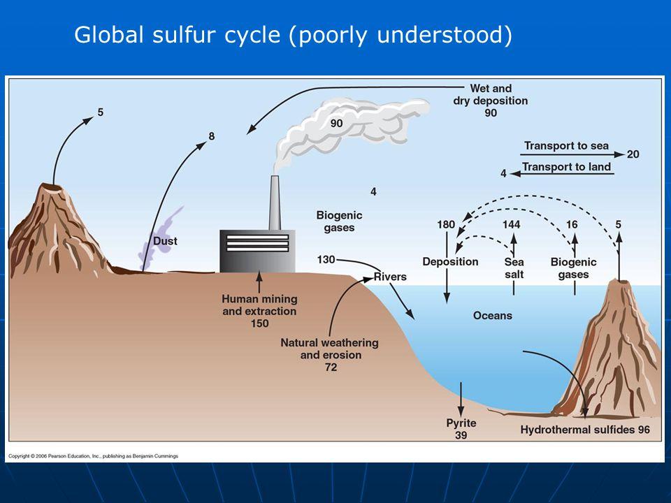 Global sulfur cycle (poorly understood)