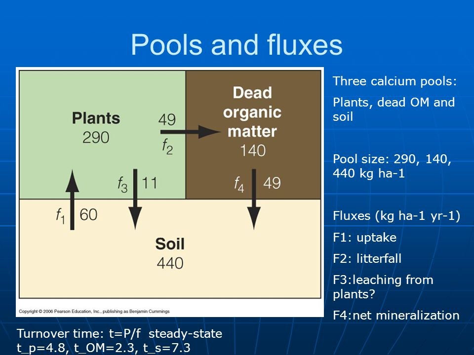 Pools and fluxes Three calcium pools: Plants, dead OM and soil Pool size: 290, 140, 440 kg ha-1 Fluxes (kg ha-1 yr-1) F1: uptake F2: litterfall F3:leaching from plants.