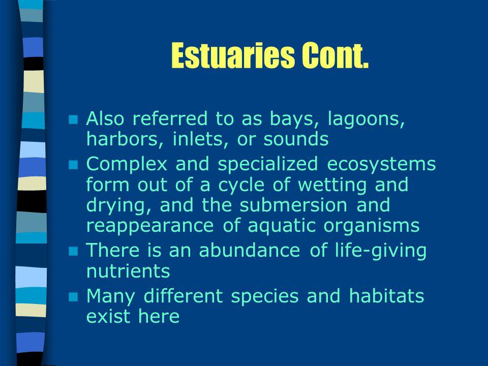 Estuaries Cont.