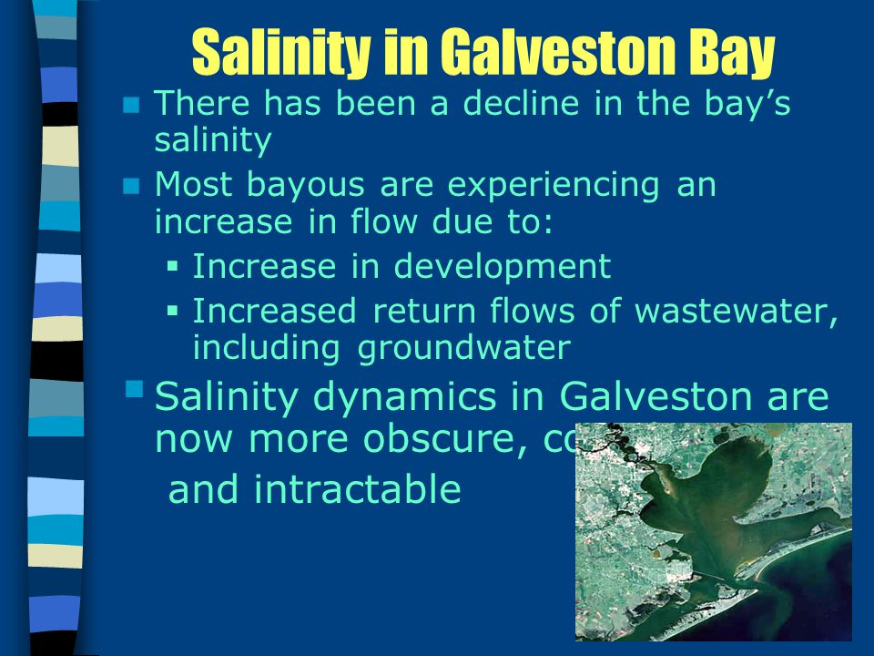 Salinity in Galveston Bay There has been a decline in the bay's salinity Most bayous are experiencing an increase in flow due to:  Increase in development  Increased return flows of wastewater, including groundwater  Salinity dynamics in Galveston are now more obscure, complex, and intractable