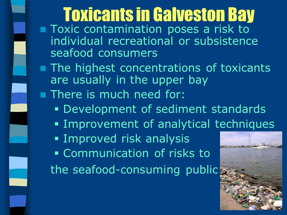 Toxicants in Galveston Bay Toxic contamination poses a risk to individual recreational or subsistence seafood consumers The highest concentrations of toxicants are usually in the upper bay There is much need for:  Development of sediment standards  Improvement of analytical techniques  Improved risk analysis  Communication of risks to the seafood-consuming public