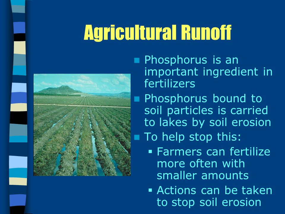 Agricultural Runoff Phosphorus is an important ingredient in fertilizers Phosphorus bound to soil particles is carried to lakes by soil erosion To help stop this:  Farmers can fertilize more often with smaller amounts  Actions can be taken to stop soil erosion