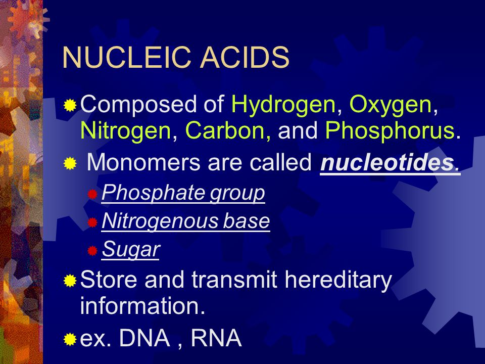 NUCLEIC ACIDS  Composed of Hydrogen, Oxygen, Nitrogen, Carbon, and Phosphorus.  Monomers are called nucleotides.  Phosphate group  Nitrogenous bas