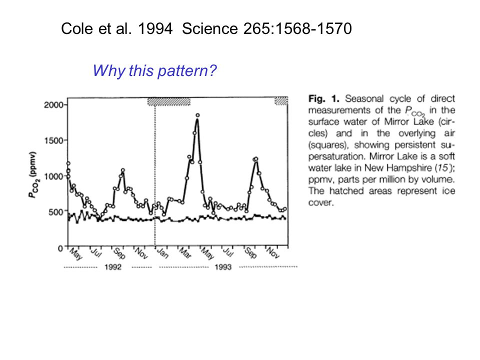 Cole et al. 1994 Science 265:1568-1570 Why this pattern?