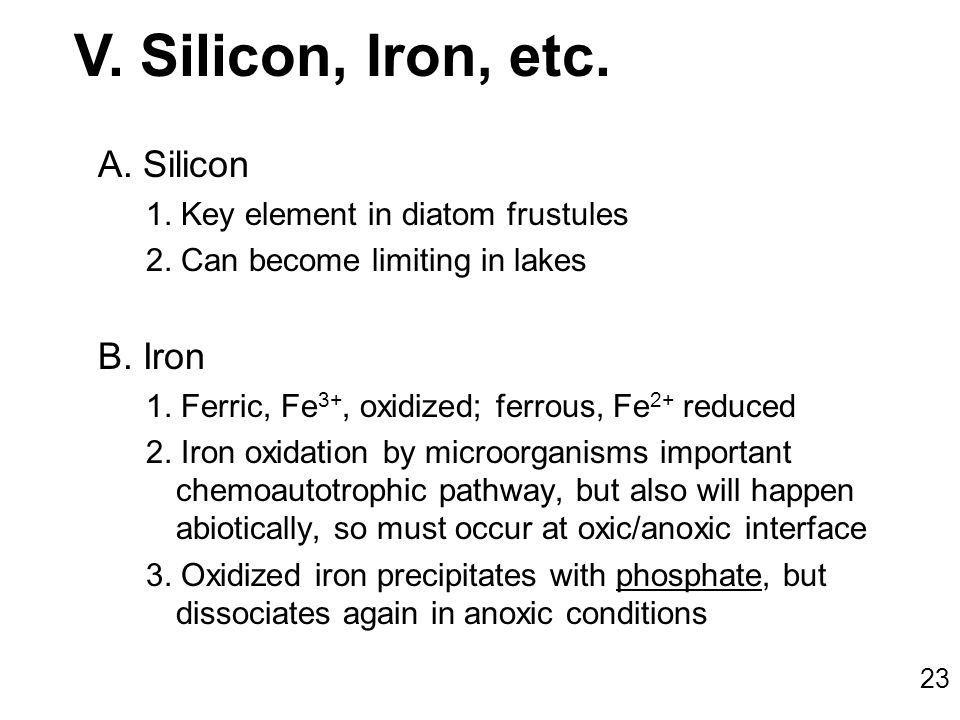 A.Silicon 1. Key element in diatom frustules 2. Can become limiting in lakes B.