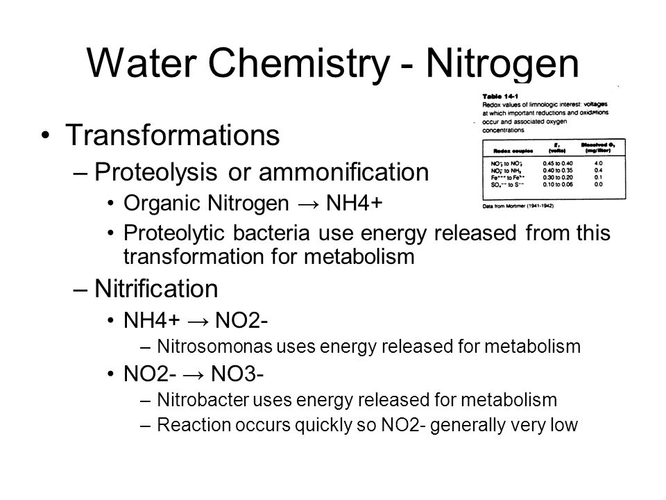 Water Chemistry - Nitrogen Transformations –Proteolysis or ammonification Organic Nitrogen → NH4+ Proteolytic bacteria use energy released from this transformation for metabolism –Nitrification NH4+ → NO2- –Nitrosomonas uses energy released for metabolism NO2- → NO3- –Nitrobacter uses energy released for metabolism –Reaction occurs quickly so NO2- generally very low