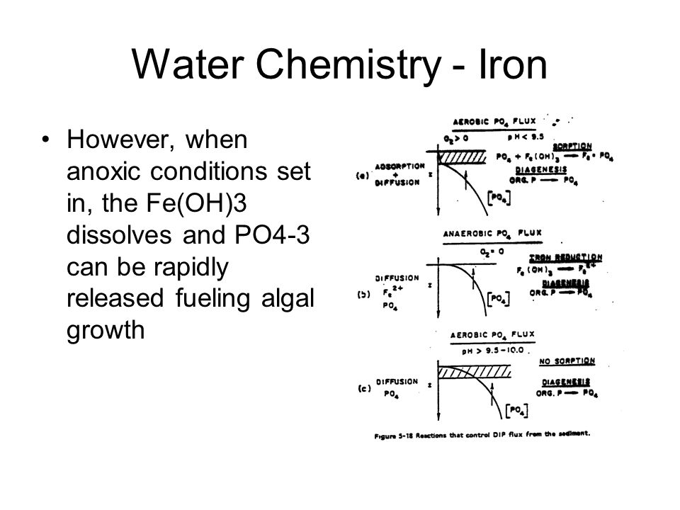 Water Chemistry - Iron However, when anoxic conditions set in, the Fe(OH)3 dissolves and PO4-3 can be rapidly released fueling algal growth