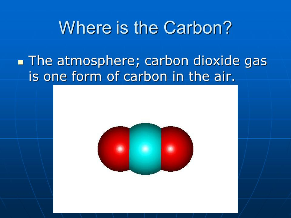 The atmosphere; carbon dioxide gas is one form of carbon in the air.