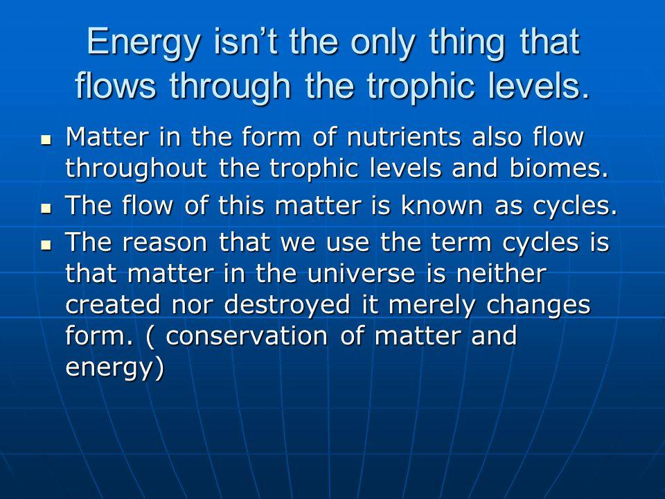 Organisms- use high-energy carbon molecules for growth.