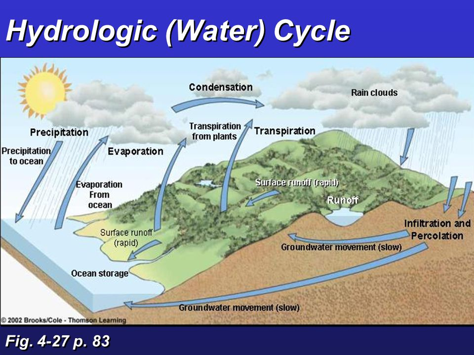 Connections: Matter Cycling in Ecosystems Biogeochemical cycles:  Hydrologic cycle (H 2 O)  Atmospheric cycles (C, N)  Sedimentary(mineral) cycles (P, S)