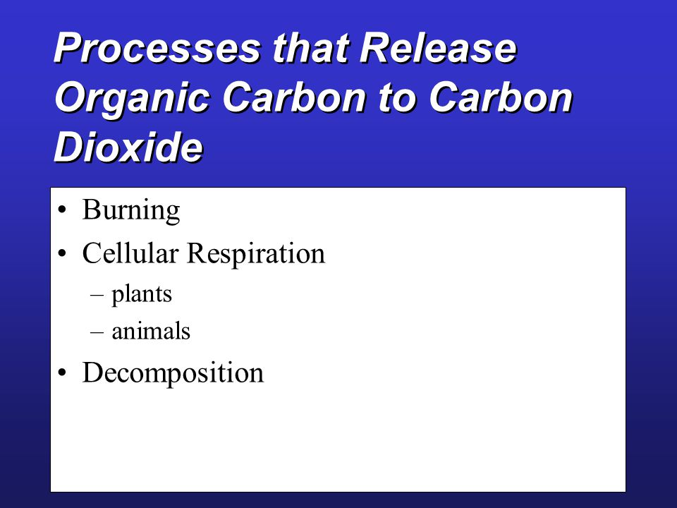 Carbon Cycle Forms structural backbone of all organic and biomolecules Structural storage of carbon and energy- storage How is CO 2 removed from atmosphere.