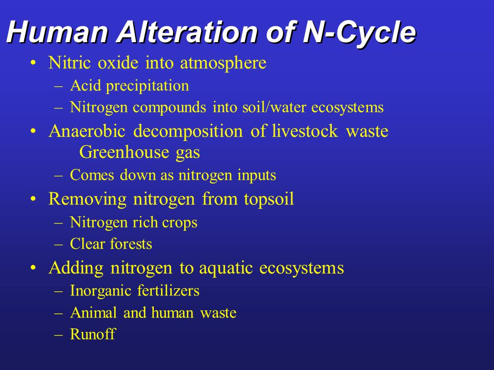 The Nitrogen Cycle Fig. 4-29 p. 86