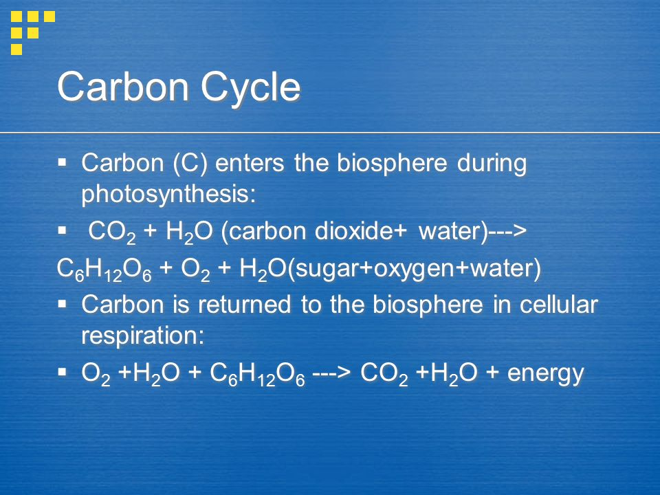 Carbon Cycle  Carbon (C) enters the biosphere during photosynthesis:  CO 2 + H 2 O (carbon dioxide+ water)---> C 6 H 12 O 6 + O 2 + H 2 O(sugar+oxyg