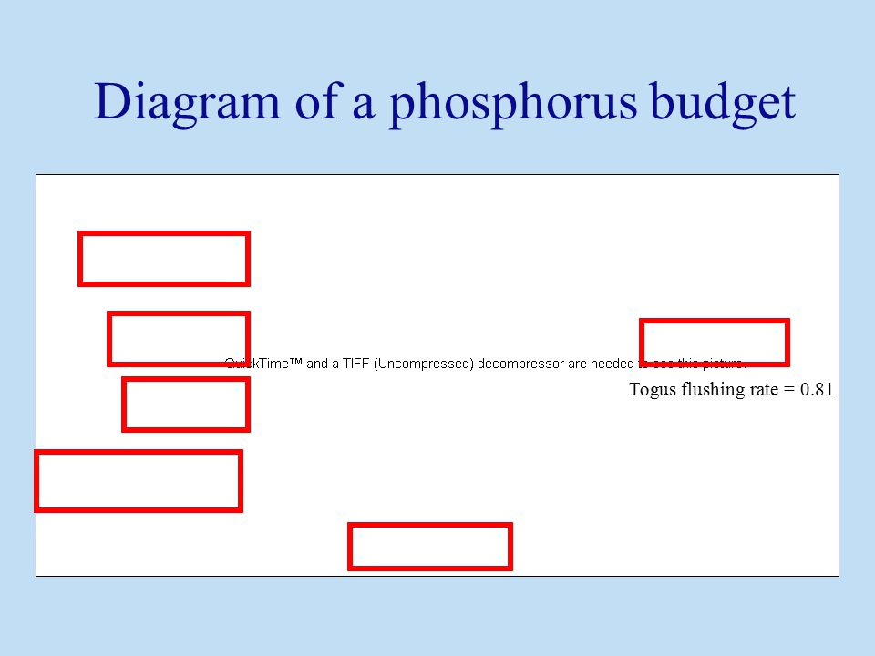 Togus flushing rate = 0.81 Diagram of a phosphorus budget