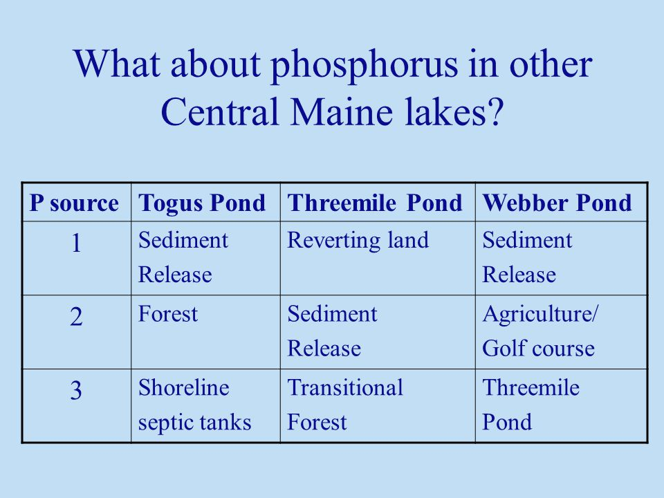 P sourceTogus PondThreemile PondWebber Pond 1 Sediment Release Reverting landSediment Release 2 ForestSediment Release Agriculture/ Golf course 3 Shoreline septic tanks Transitional Forest Threemile Pond What about phosphorus in other Central Maine lakes?