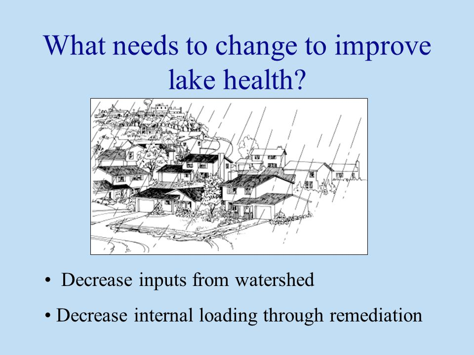 Decrease inputs from watershed Decrease internal loading through remediation What needs to change to improve lake health?
