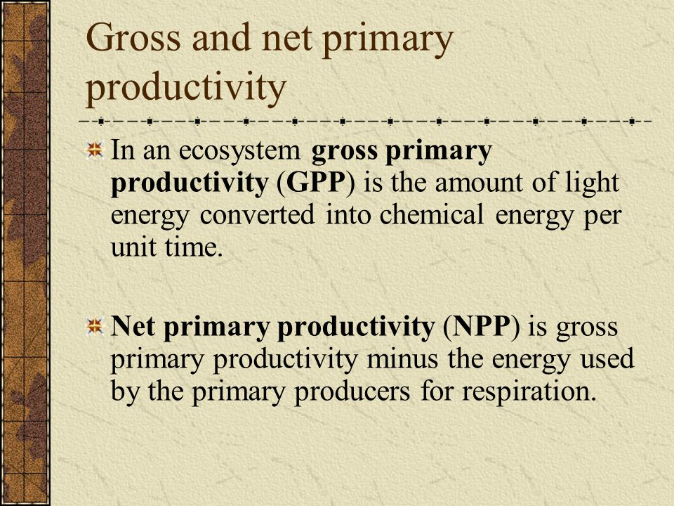 Gross and net primary productivity In an ecosystem gross primary productivity (GPP) is the amount of light energy converted into chemical energy per u
