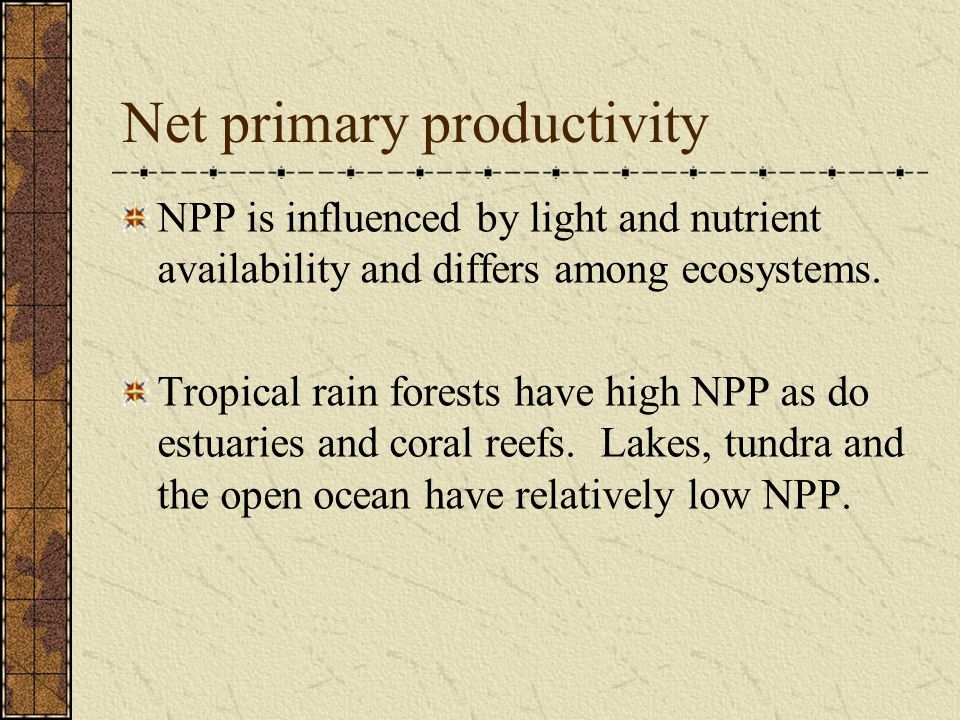 Net primary productivity NPP is influenced by light and nutrient availability and differs among ecosystems. Tropical rain forests have high NPP as do