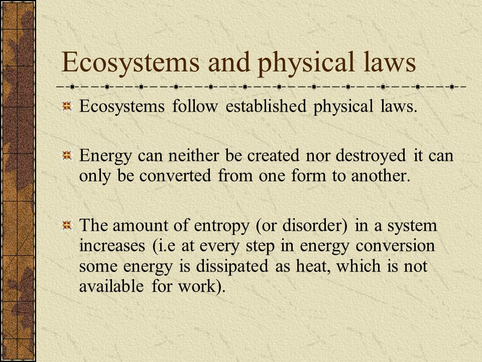 Ecosystems and physical laws Ecosystems follow established physical laws.
