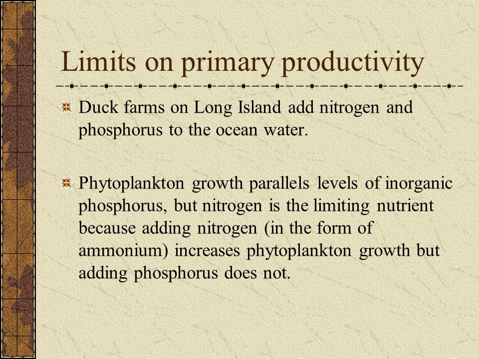 Limits on primary productivity Duck farms on Long Island add nitrogen and phosphorus to the ocean water. Phytoplankton growth parallels levels of inor
